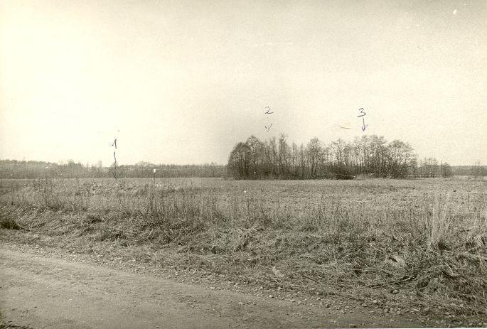 Kivikalmed (nr 1 - 13344, nr 2 - 13343, nr 3 - 13342). Foto: O. Kõll, 28.04.1980.