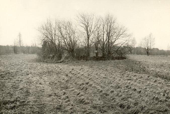 Kivikalme - põhjast. Foto: O. Kõll, 28.04.1980.