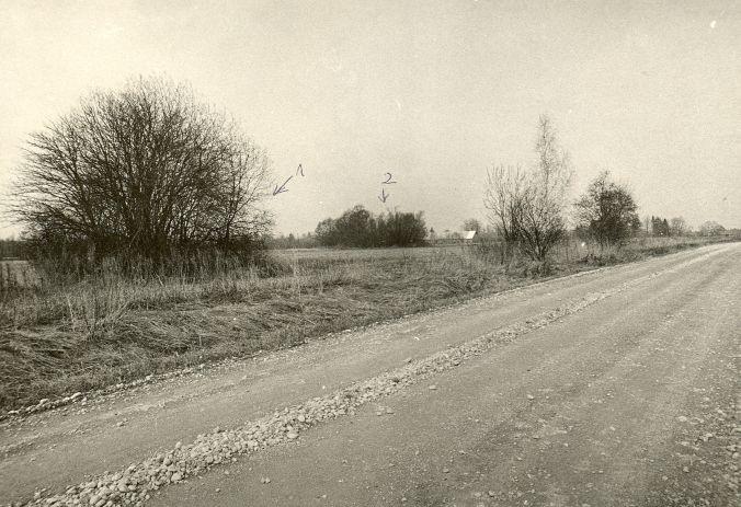 Kivikalmed (nr 1 - 13345, nr 2 - 13342-13343) - kagust. Foto: O. Kõll, 28.04.1980.
