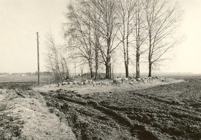 Kivikalme. Foto: O. Kõll, 28.04.1980.