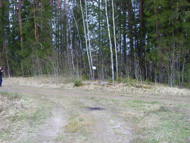 Vaade kalmele teelt. Foto: Ulla Kadakas, 06.05.2005.