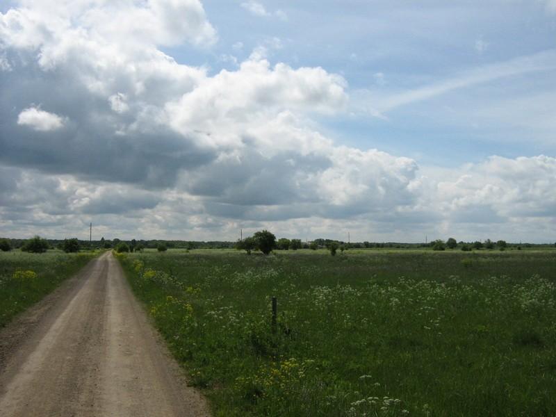 Muistsed põllud reg nr 10774, vaade kirdest. Foto: M. Abel, 10.06.2010