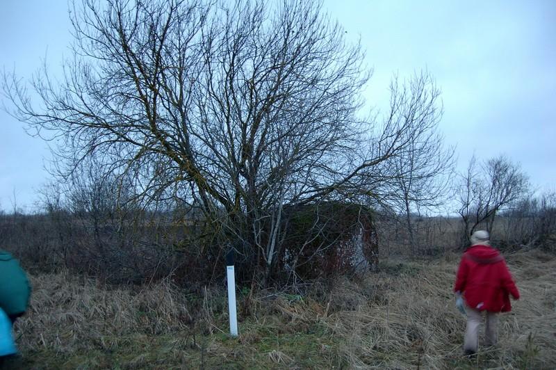Kultusekivi reg nr 10752, vaade kagust. Foto: A. Ehrenpreis, 2006.
