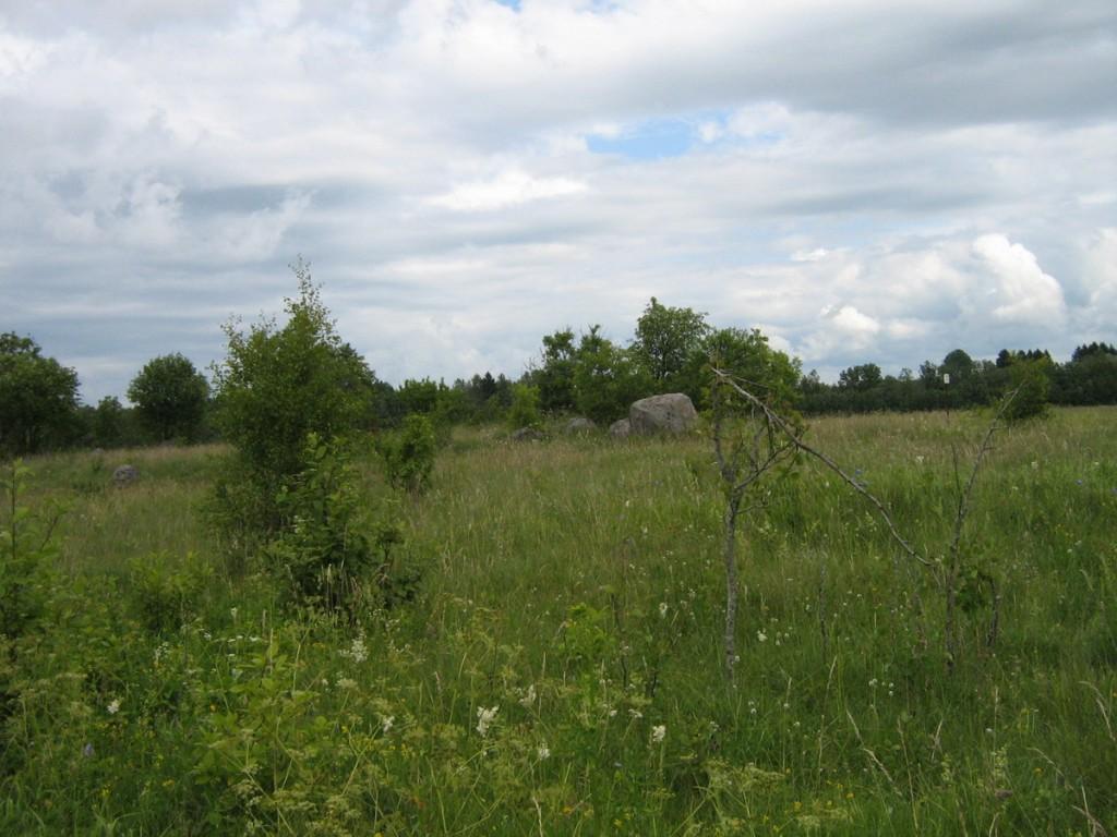 """Asulakoht ja """"Kuradimägi"""" vaade põlluvaheteeltedelast. Foto: Kalli Pets, 09.07.2010."""