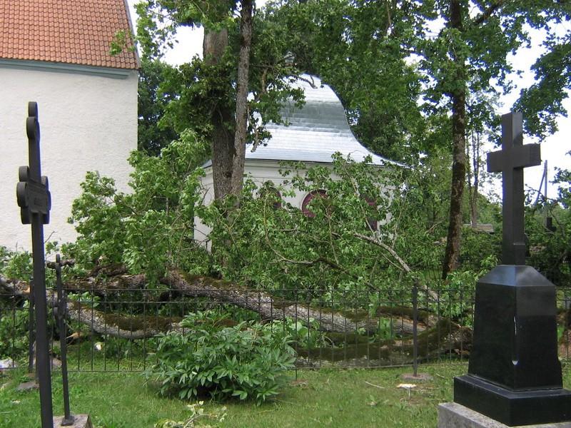 Väike-Maarja kirikuaia kabel : 16108 vaade lõunast , ees näha tormikahjustustest 08.08.2010 räsitud puud.  Autor Anne Kaldam  Kuupäev  09.08.2010