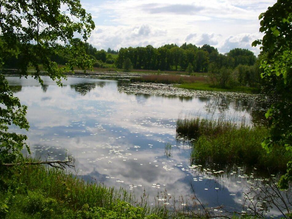 Maastikupark. Riina Pau  07.06.2005