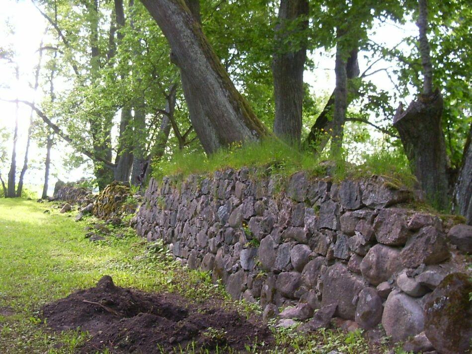 Piirdemüüri taga 18. s. regul. pargi puud  Riina Pau  07.06.2005