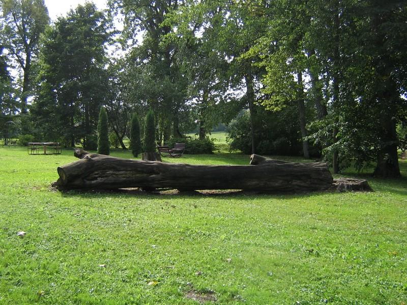 Salla mõisa park 15717. vaade lõunapoolsele pargiosale, peahoone läänepoolsest  küljest  Autor Anne Kaldam  Kuupäev: 10.09.10.