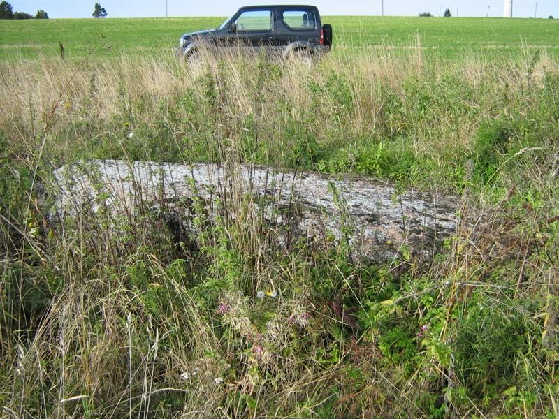 Lohukivi, reg nr 10884. Foto: Ingmar Noorlaid, 07.09.2010.
