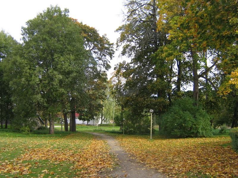 Udriku mõisa park reg. 15680, vaade kirdepoolsele pargialale -peahoonest kirdesse Autor Anne Kaldam  Kuupäev 29.09.2010