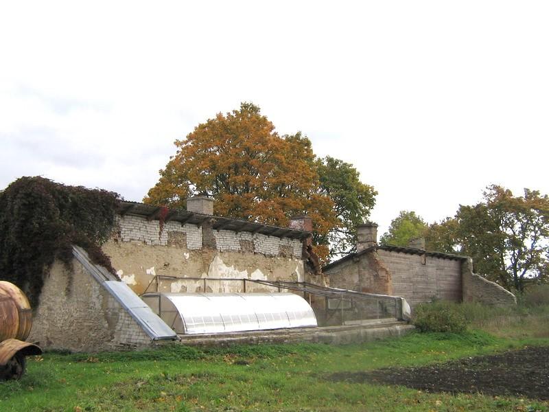 Udriku mõisa kasvuhoone, 15682, vaade lõunast - näha säilinud põhjapoolne kiviehitus.  Autor: Anne Kaldam aeg; 29.09.2010