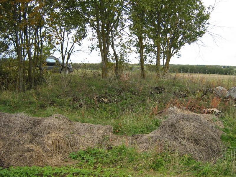 Kivikalme, reg nr 10708. Foto: Ingmar Noorlaid, 30.09.2010.