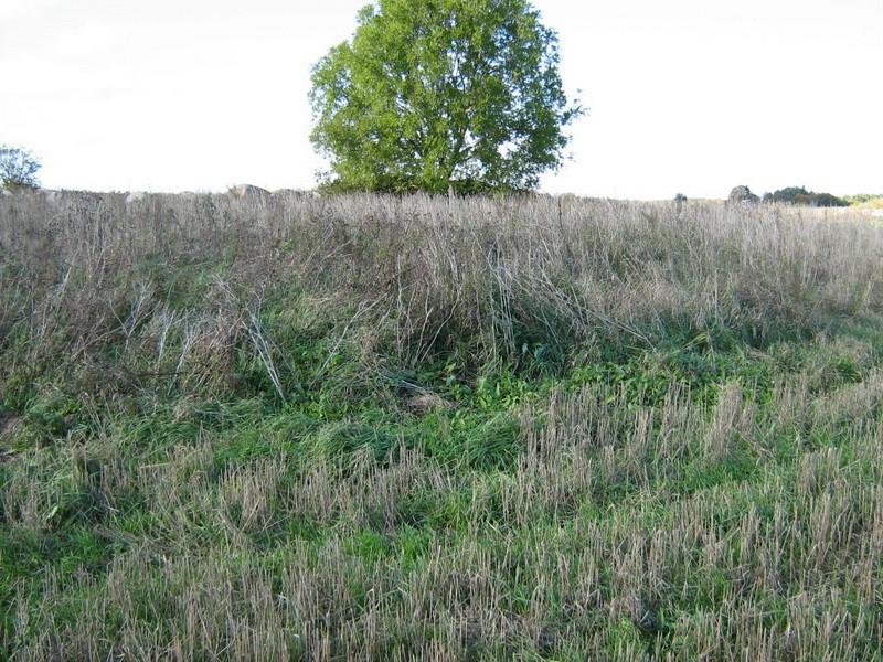 Kivikalme, reg nr 10722. Foto: Ingmar Noorlaid, 30.09.2010.