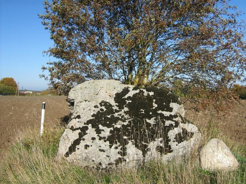 Lohukivi, reg nr 10890. Foto: Ingmar Noorlaid, 07.10.2010.