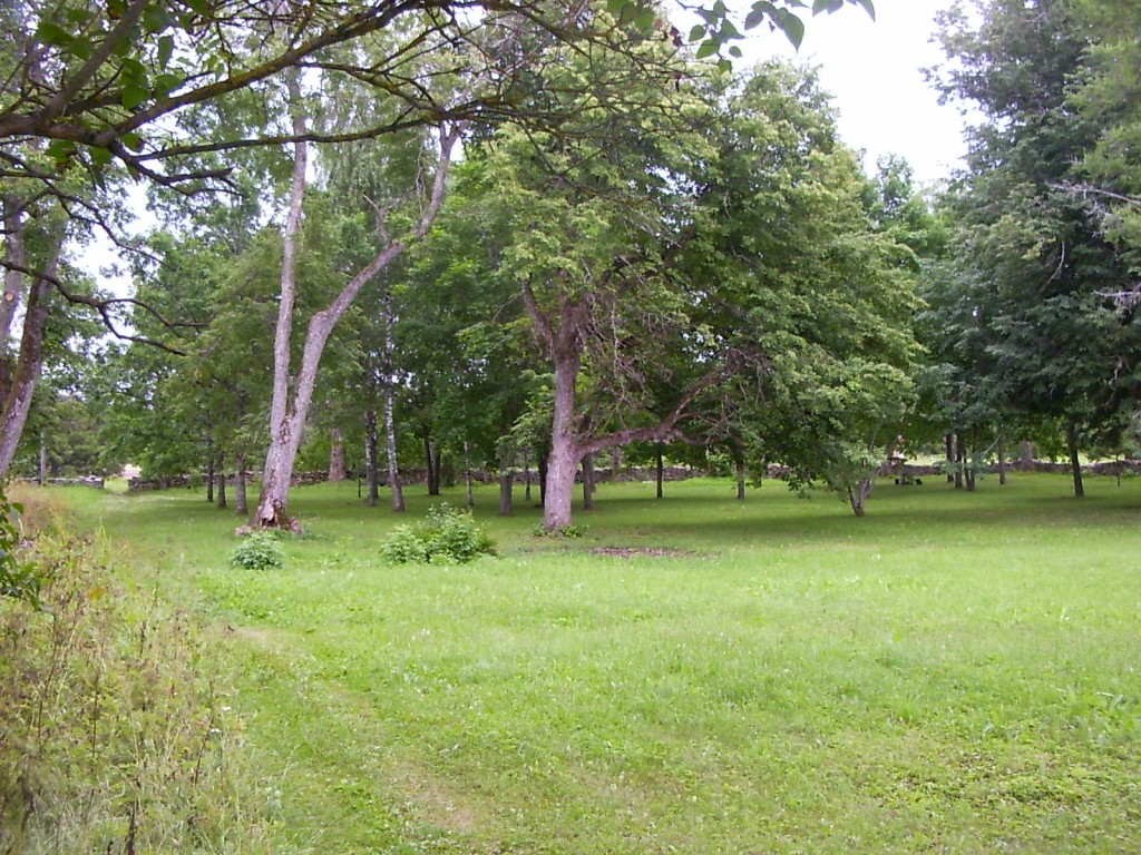 Park, taamal piirdemüür.  Autor Tarvi Sits  Kuupäev  26.07.2005