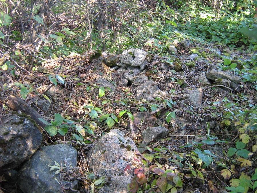 Kivid tähisest põhja pool. Foto: Kalli Pets, 01.10.2010.