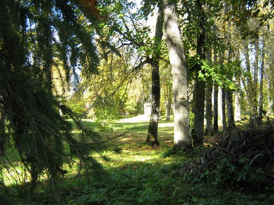 Vaade pargile idapiirilt Kalli Pets 01.10.2010