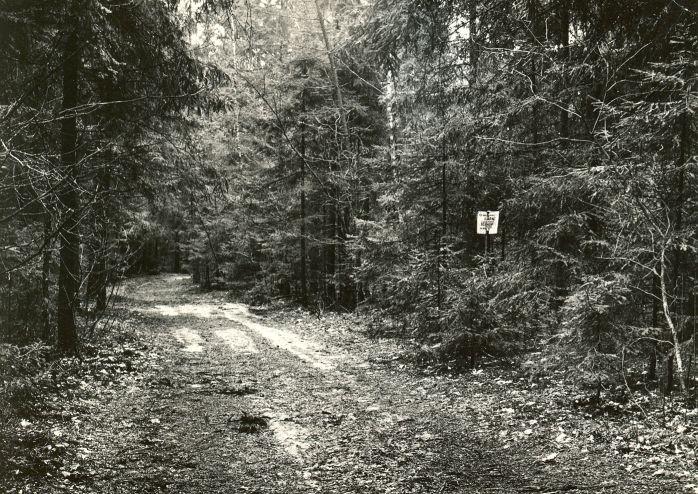 Kääpad. Foto: M. Pakler, 1979.
