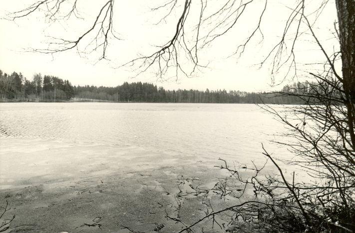 Järveasula. Foto: M. Pakler, 1979.