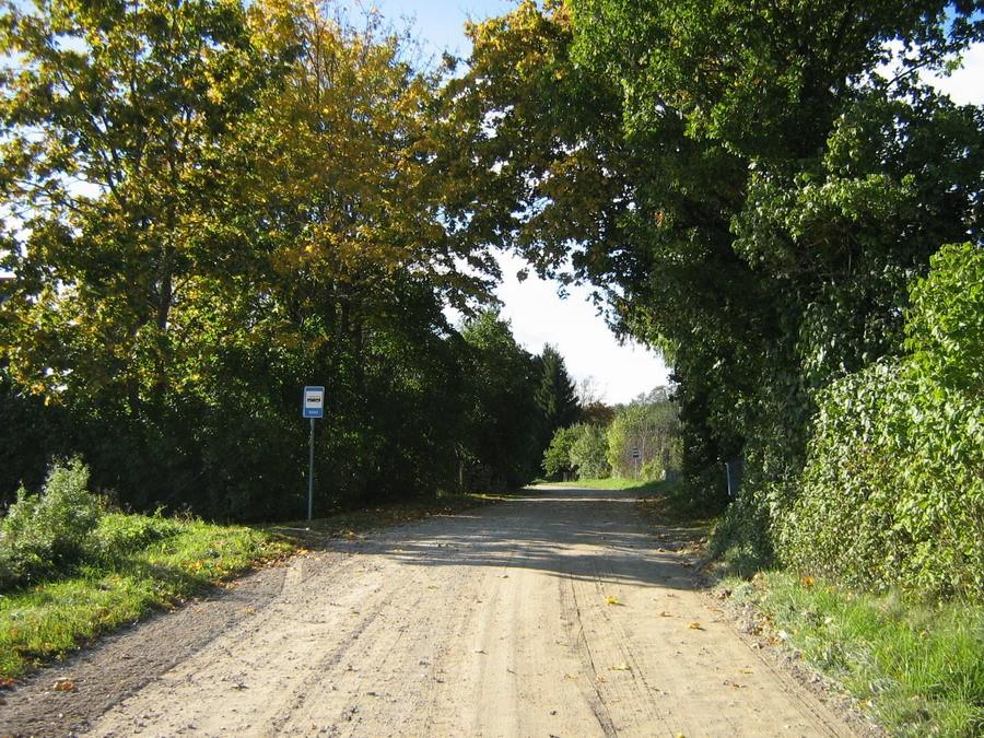 Asulat läbiv tee läänest. Foto: Kalli Pets, 29.09.2010.
