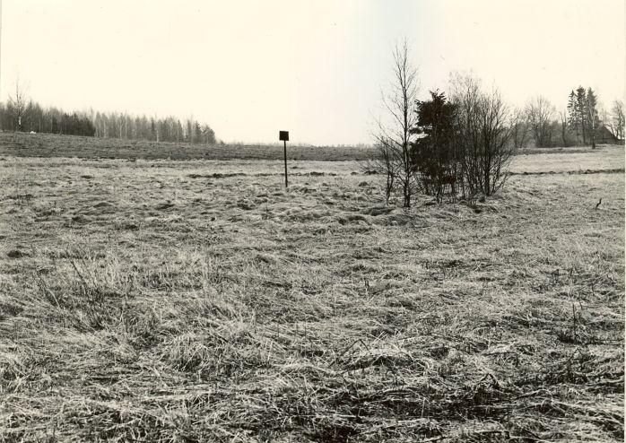 Kivikalme. Foto: M. Pakler, 25.04.1979.