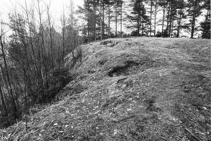 Maa-allune kalmistu - läänest. Foto: M. Pakler, 06.05.1981.