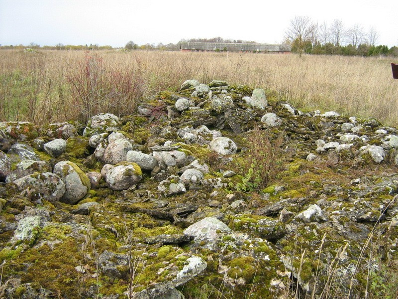 Lohukivi reg nr 10907. Foto: Ingmar Noorlaid, 22.10.2010.