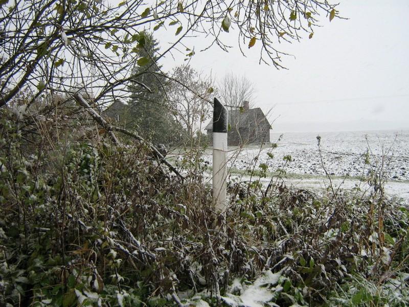 Asulakoht, reg nr 10917. Foto: Ingmar Noorlaid, 22.10.2010.