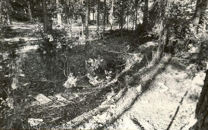 Kääpad. Foto: M. Pakler, september 1975.