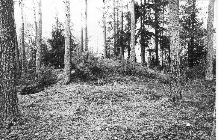 Kääpad. Foto: M. Pakler, 27.09.1979.