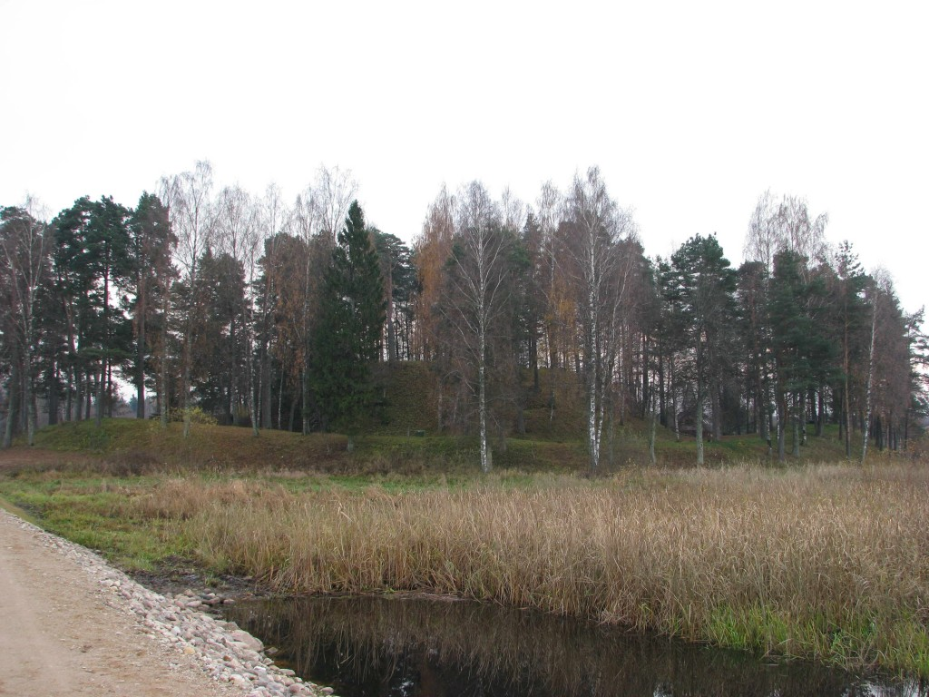 Vaade linnusele Võrtsjärve poolt. Foto: Martti Veldi, 02.11.2010.