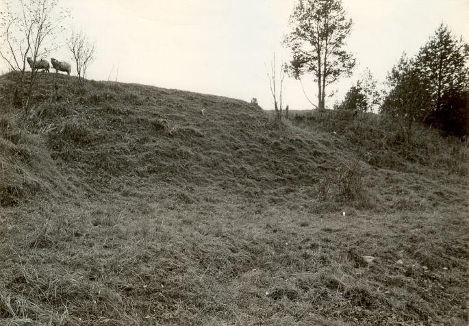 Linnamägi kirdest. Foto: E. Väljal, 1985.