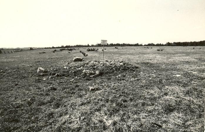 Muistsete põldude jäänused - kirdest. Foto: M. Pakler, 06.05.1987.