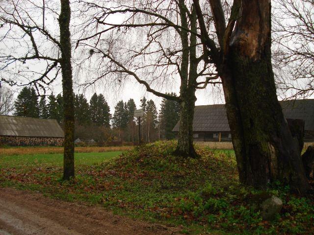 Vaade asulakoha tähisele asulakoha põhjaosas. Foto: Karin Vimberg, 03.11.2010.