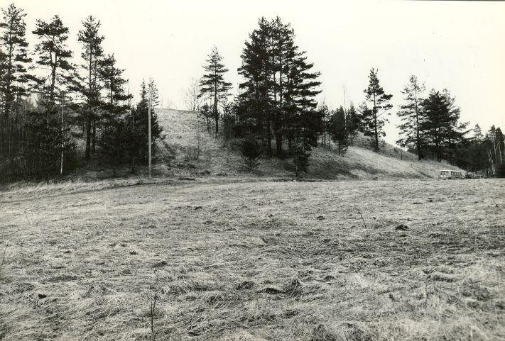 Linnamägi. Foto: M. Pakler, 06.05.1981.