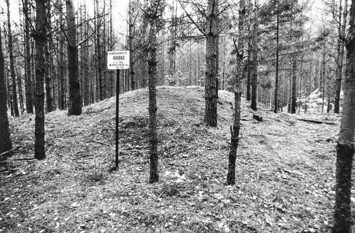 Kääbas. Foto: M. Pakler, 27.09.1979.