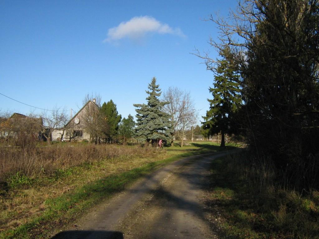 Vaade lõunapiirilt loode poole. Foto: Kalli Pets, 05.11.2010.