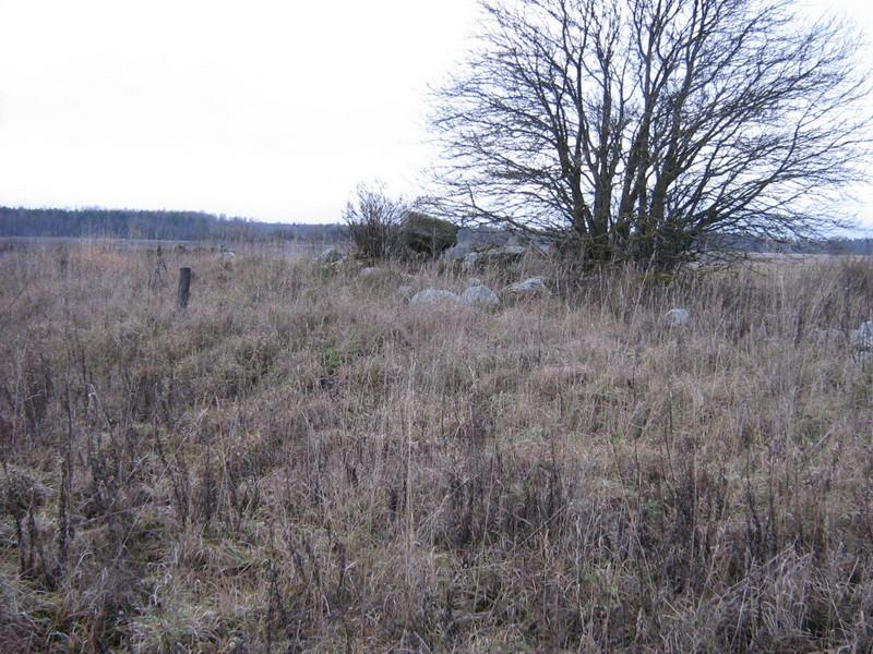 Kivikalme reg nr 10830. Foto: Ingmar Noorlaid, 08.11.2010.