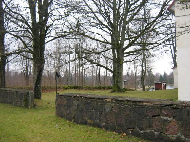 Vaade põhja poole kirikust Nele Rent 11.11.2010
