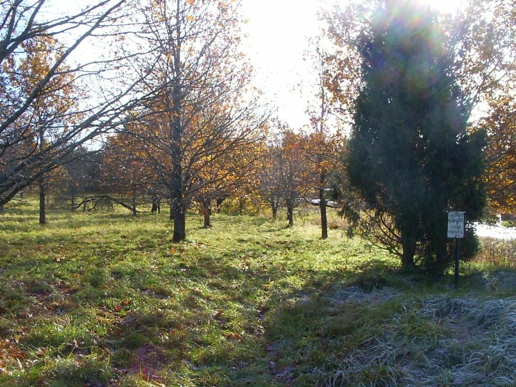 Vaade kalmistult Jakobsoni talu poole, paremal jõgi. Foto: Ulla Kadakas, 25.10.2005.