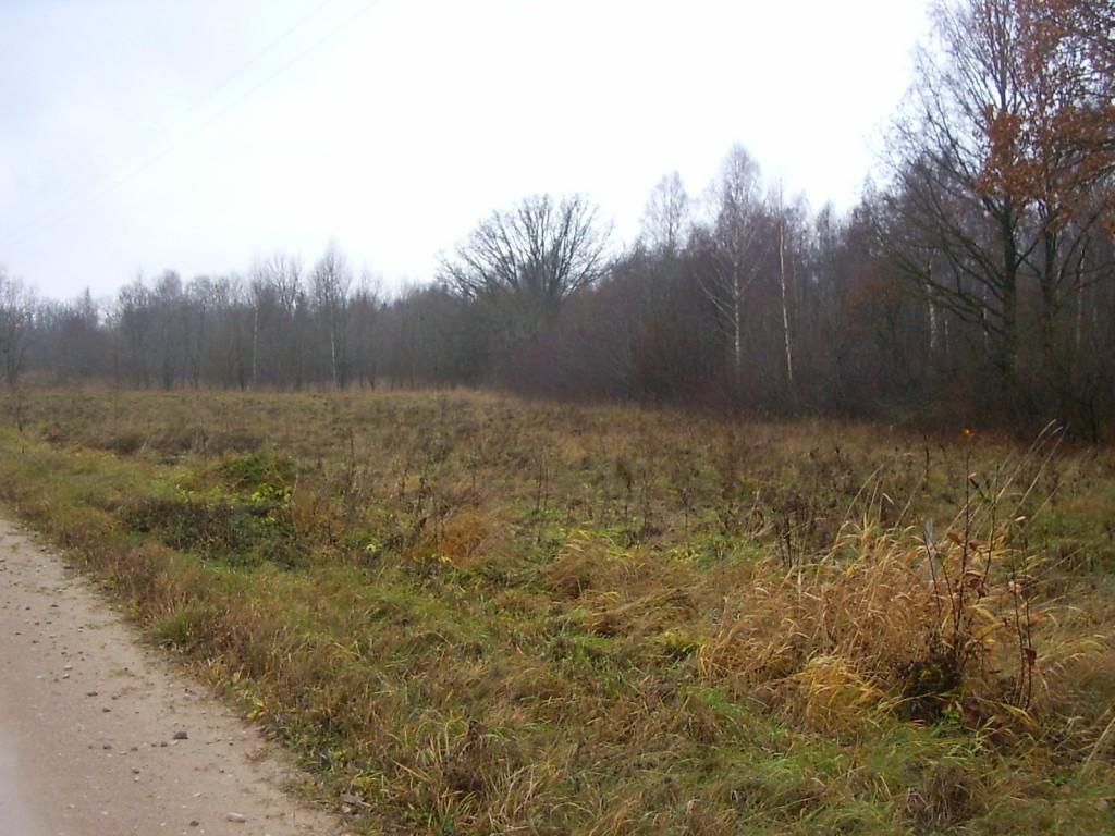 Vaade maanteelt lääne poole. Foto: Ulla Kadakas, 08.11.2005.