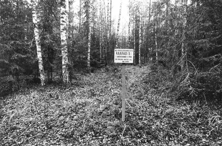 Kääbas reg nr 13614 (1880). Foto: M. Pakler, 10.10.1979.