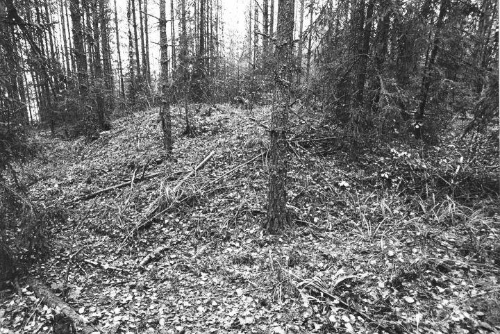 Kääbas reg nr 13616 (39-k). Foto: M. Pakler, 10.10.1979.
