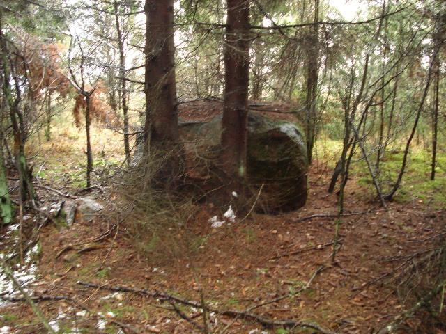 Vaade ohvrikivile idast ehk Kõima raba poolt. Foto: Karin Vimberg, 19.11.2010.