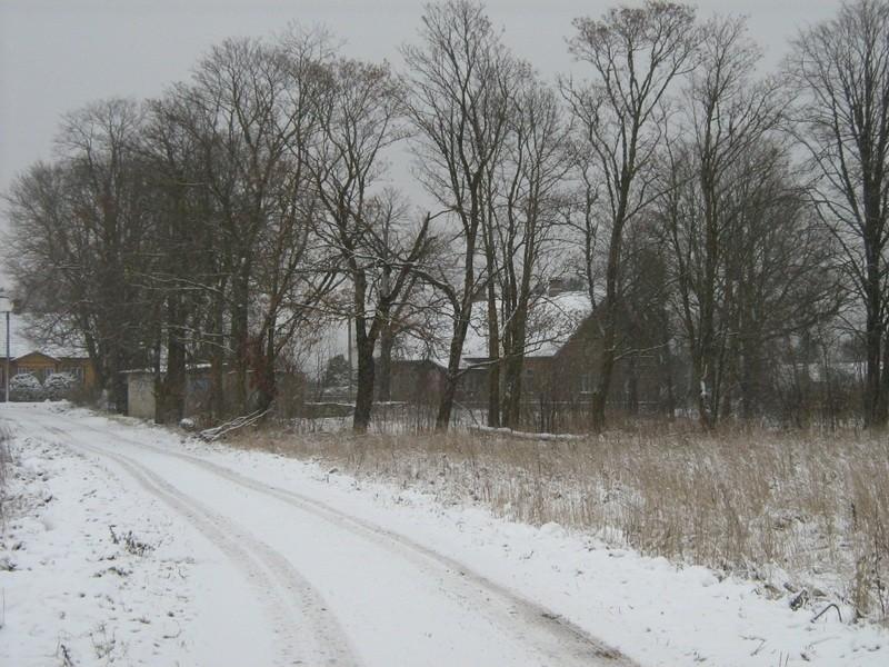 Asulakoht reg nr 10803. Foto: Ingmar Noorlaid, 23.11.2010.