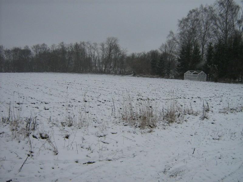 Asulakoht reg nr 10802. Foto: Ingmar Noorlaid, 23.11.2010.