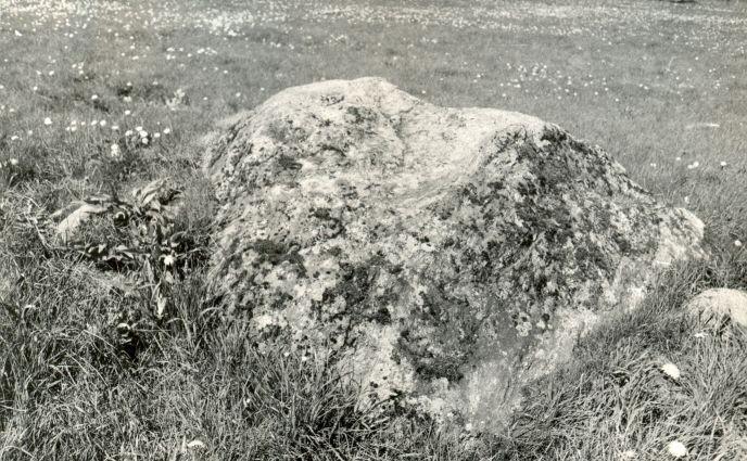 E. Väljal. 1980. aastad. Mai. Vaade mälestisele idast