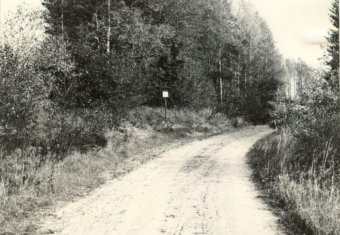 Maa-alune kalmistu. Foto: M. Pakler, 25.09.1972.