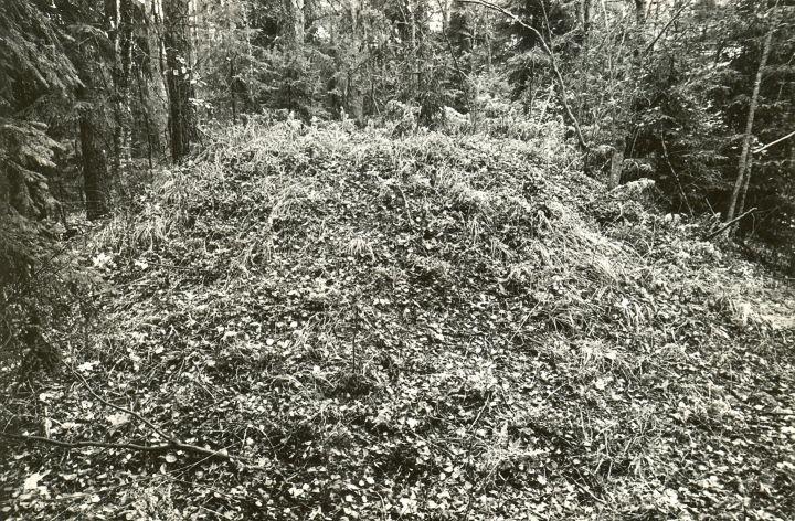 Kääbas. Foto: M. Pakler, 10.10.1979.
