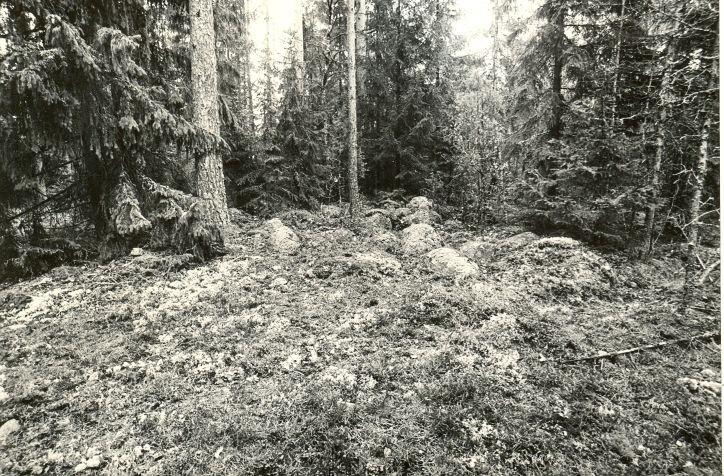 Kivikalme kagust. Foto: M. Pakler, 26.09.1979.